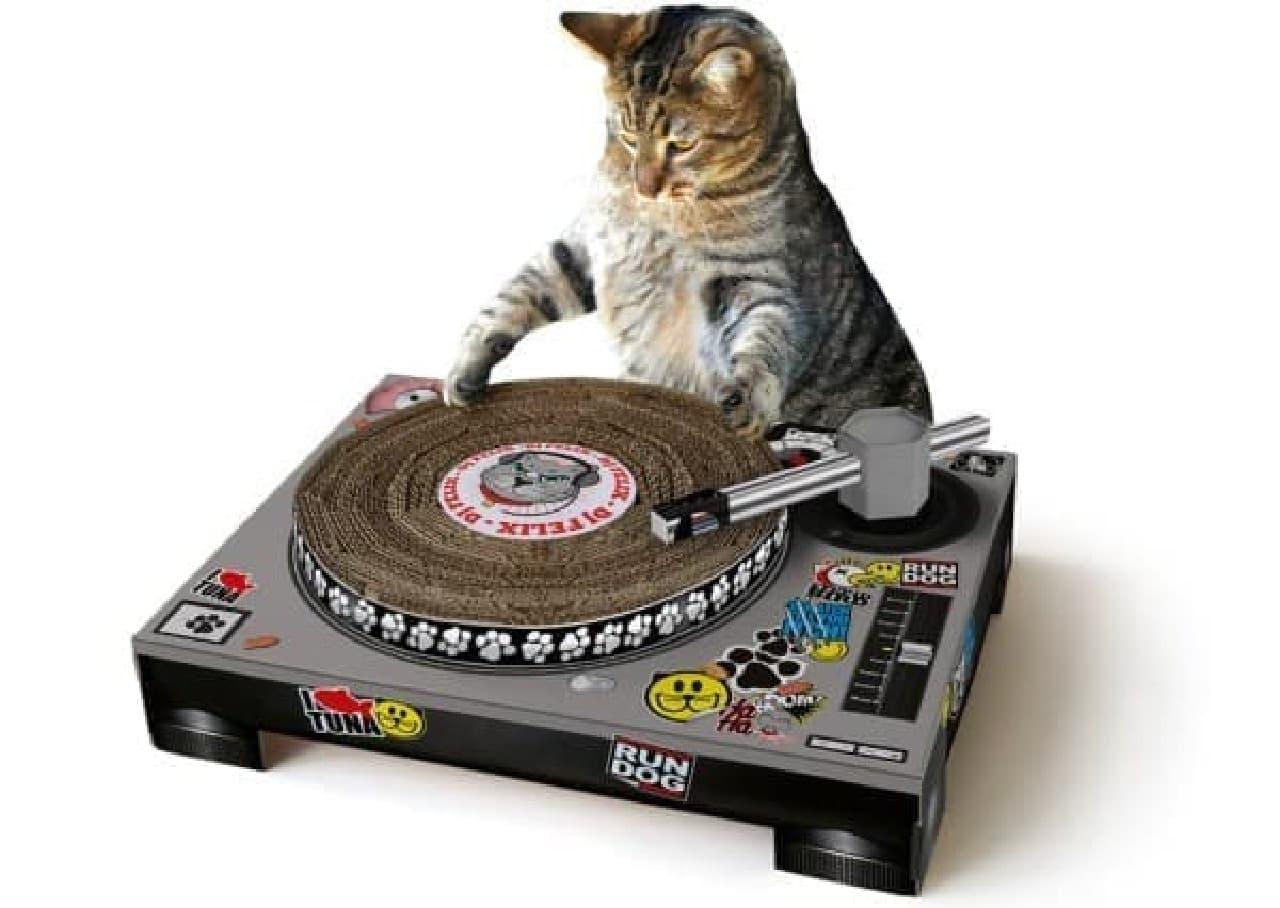 爪とぎ姿はまるで DJ!?