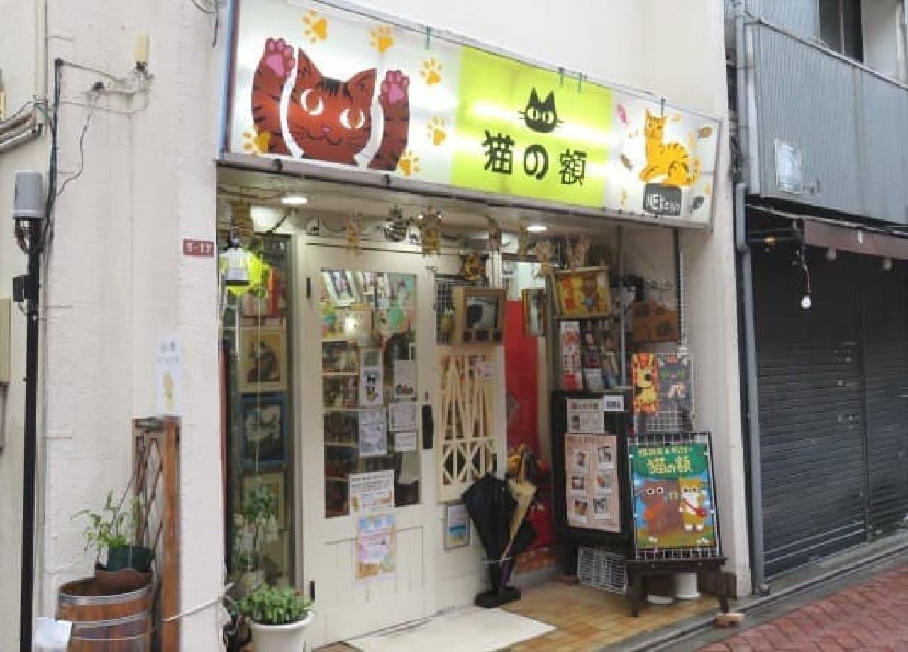 猫雑貨&猫ギャラリーのお店「猫の額」発見!