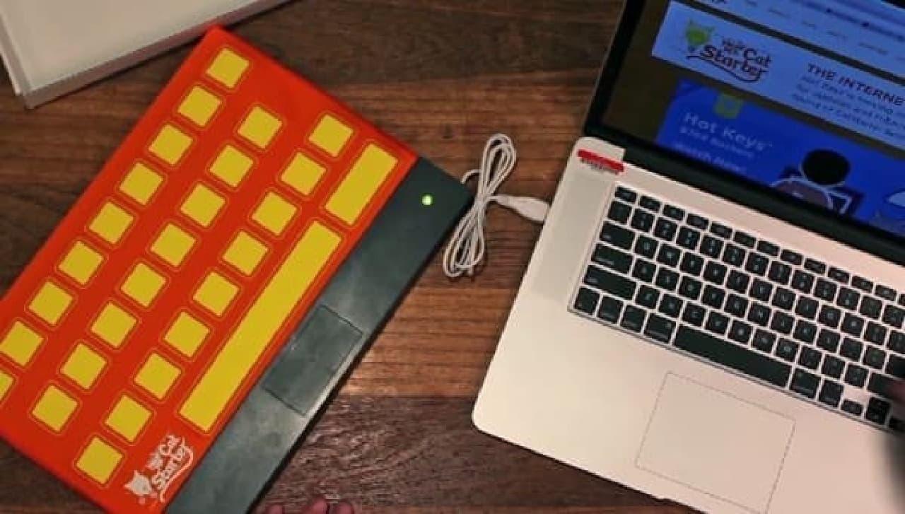 コンピューターキーボードを完璧に再現(?)したネコ用カーペットだ  まさに、ネコ騙し!?