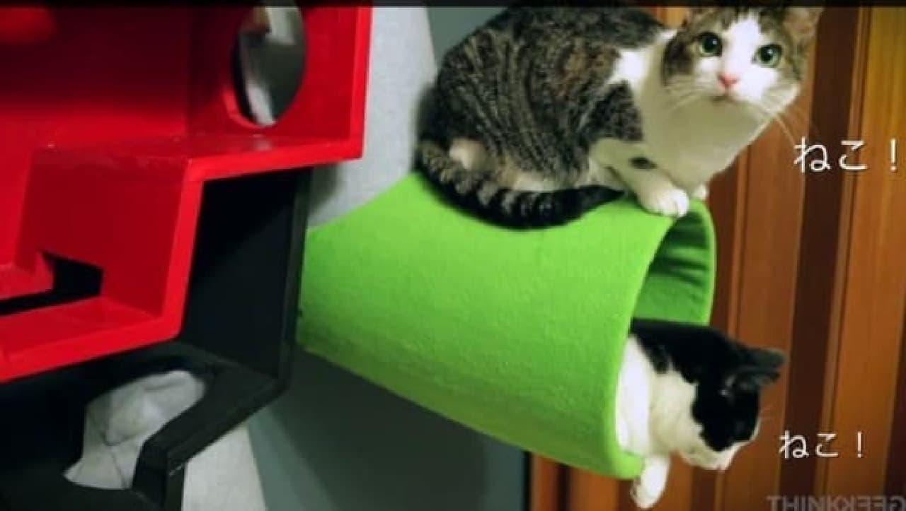 ネコが2匹の場合、「ねこ!」という字幕は2か所に