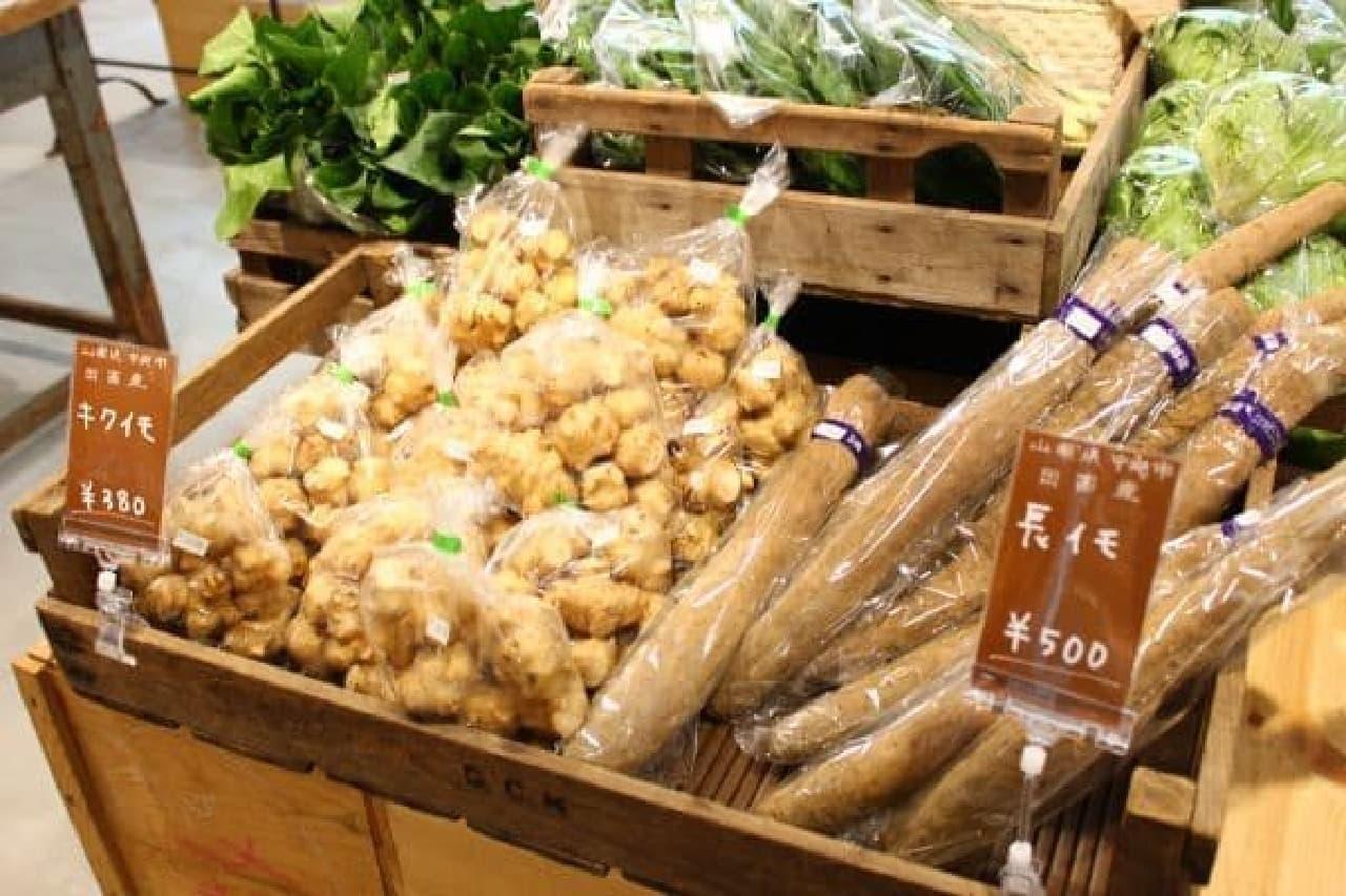 お店自慢の産直野菜
