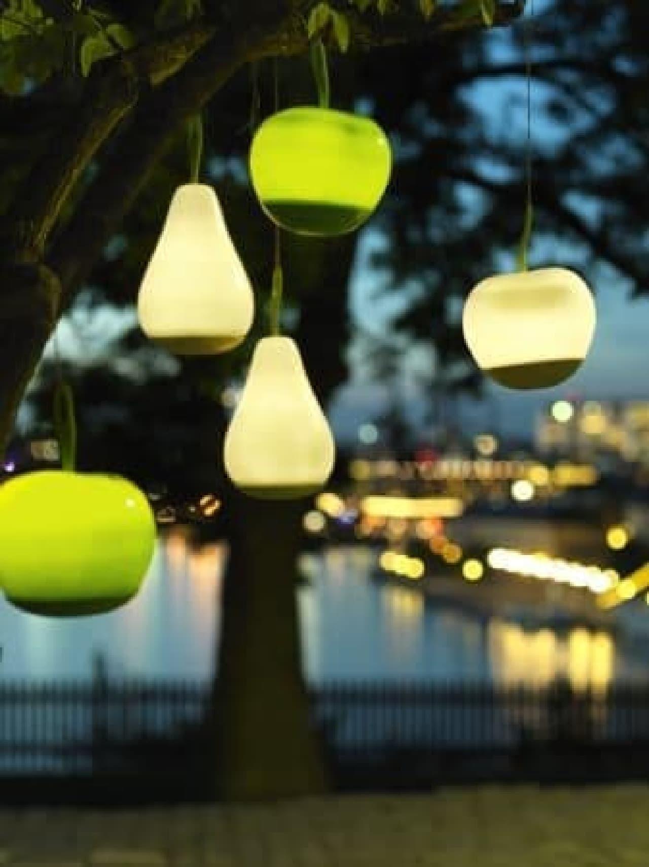 環境にやさしい屋外 LED 照明