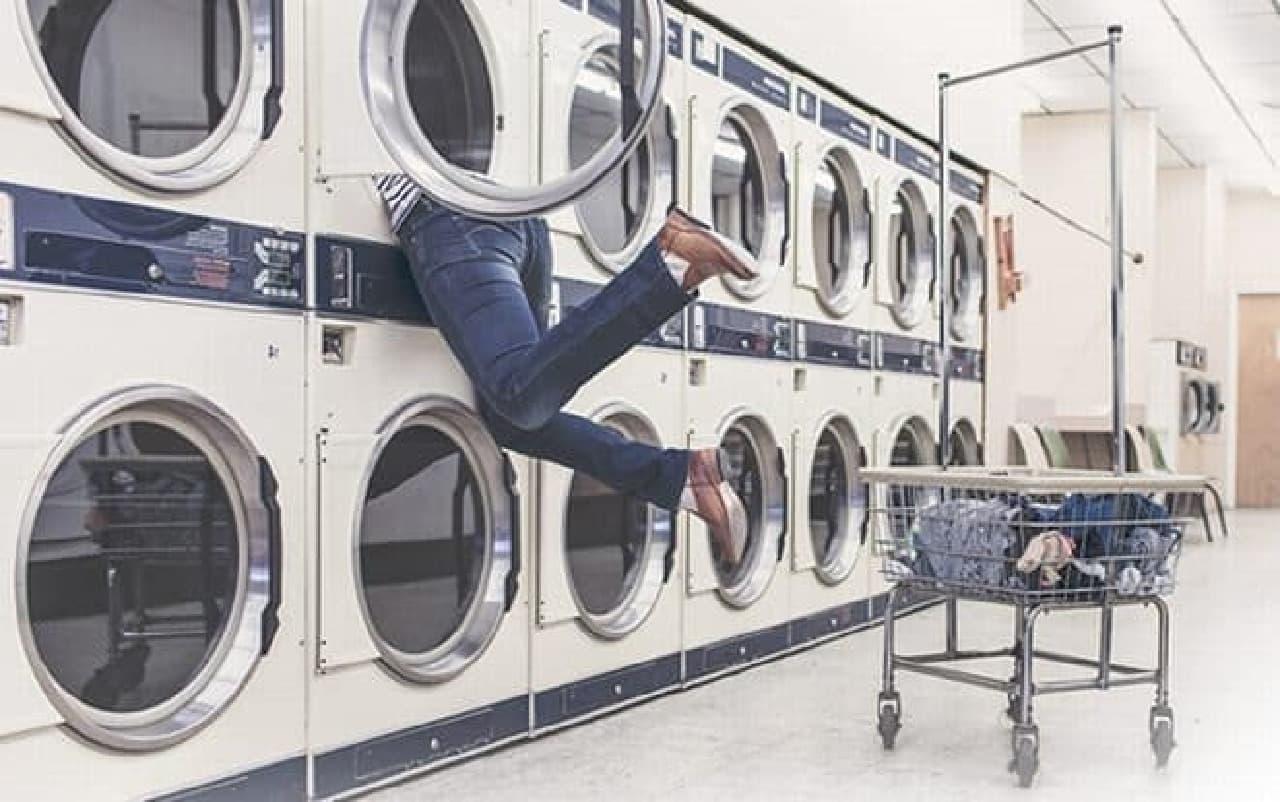 飼い主と内ポケットの同時洗濯は不可