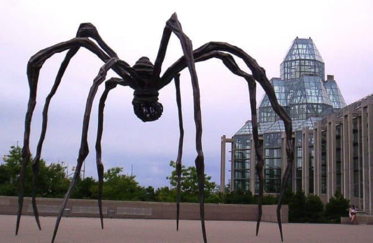参考画像:オタワのカナダ国立美術館に設置された「Maman」  六本木ヒルズにもありますね