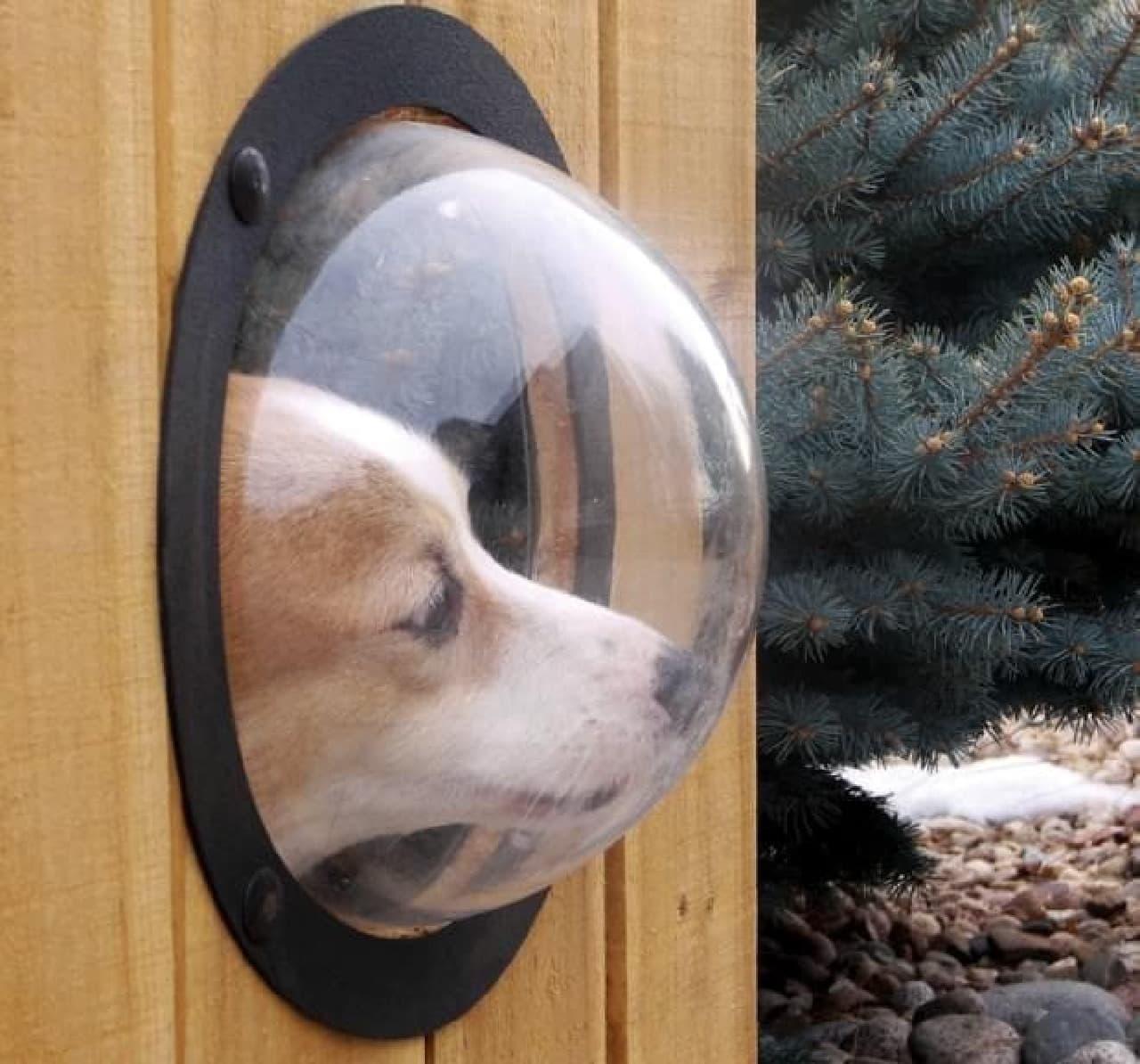 犬の好奇心を満たすノゾキアナ「petpeek Fence Window」 えんウチ