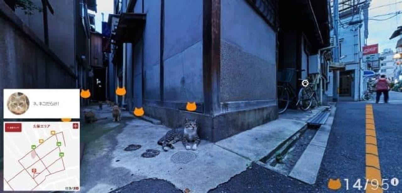 10月1日に追加公開された「久保」エリア  ネコだらけ!