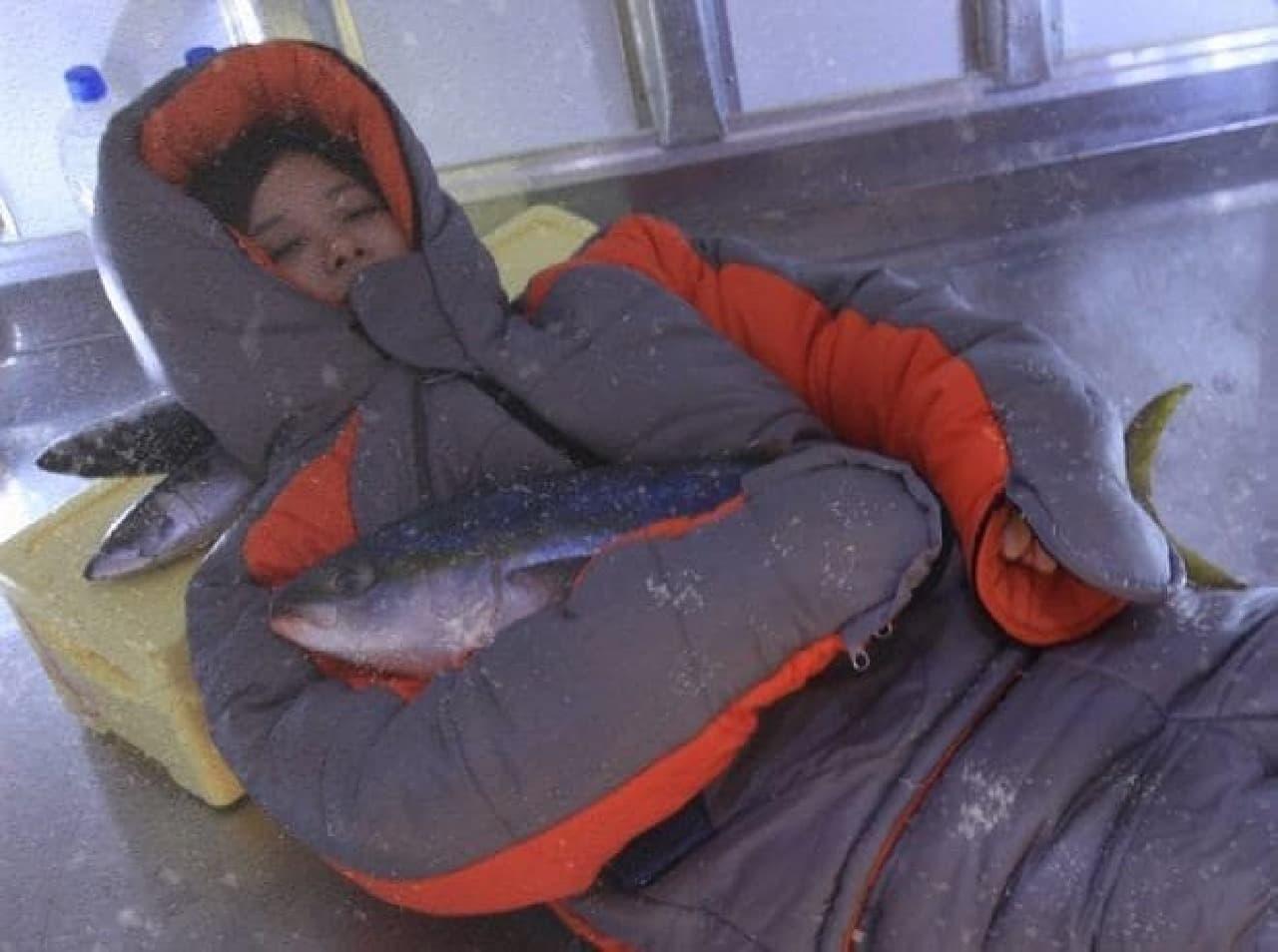 サバを枕に、ブリを抱いて仮眠もできる