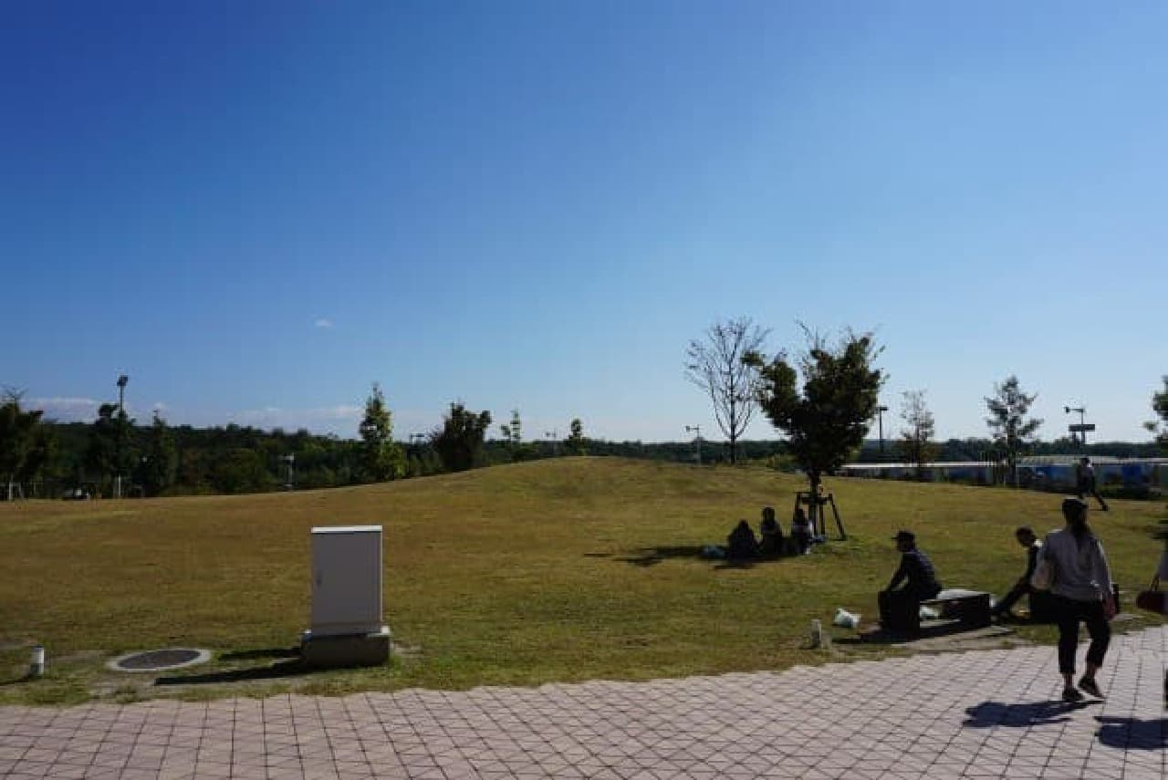 ピクニックを楽しむ人も多くいました