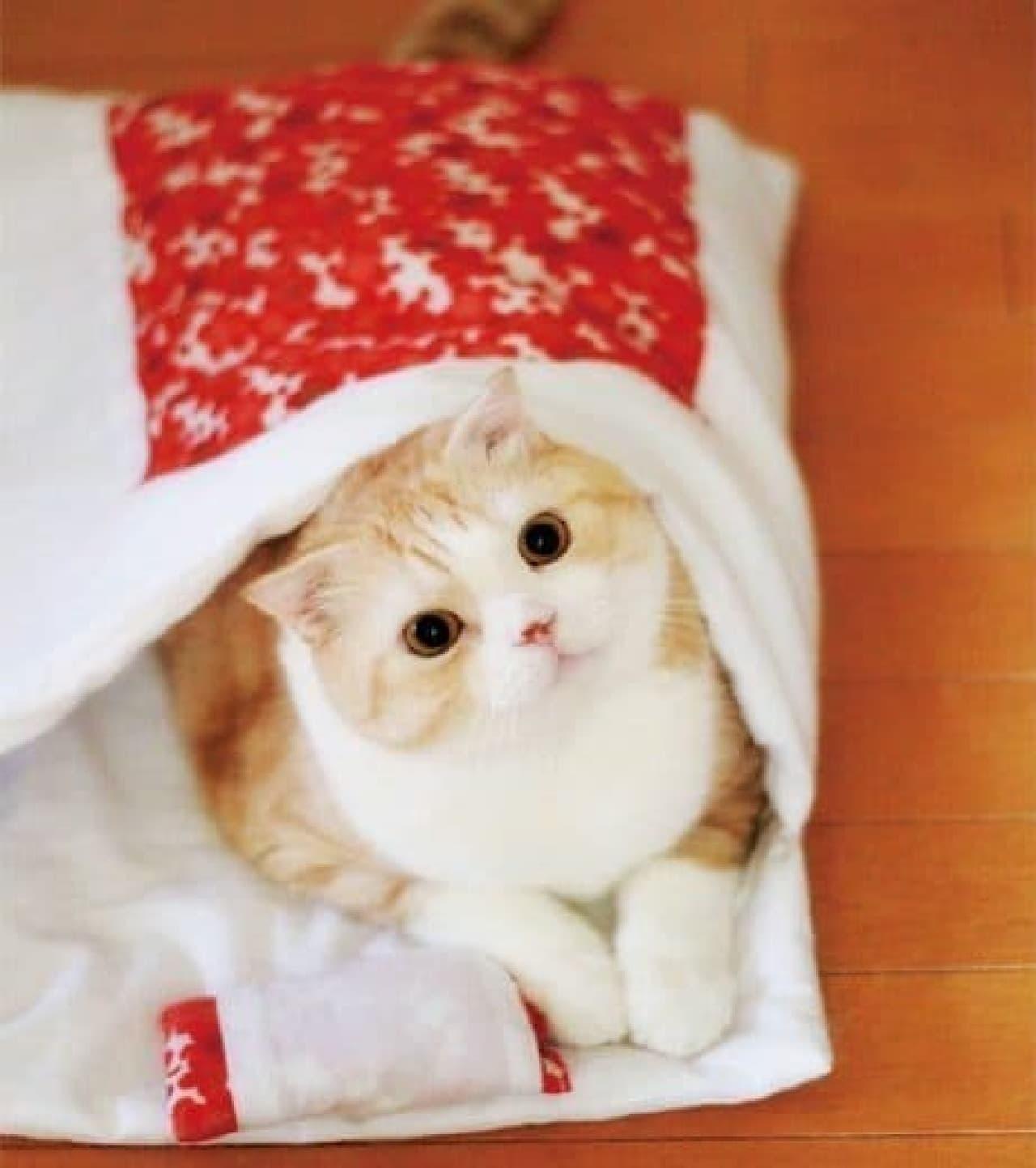 新商品「おやすみニャン猫用和布団」  お先にお休みさせていただきニャす