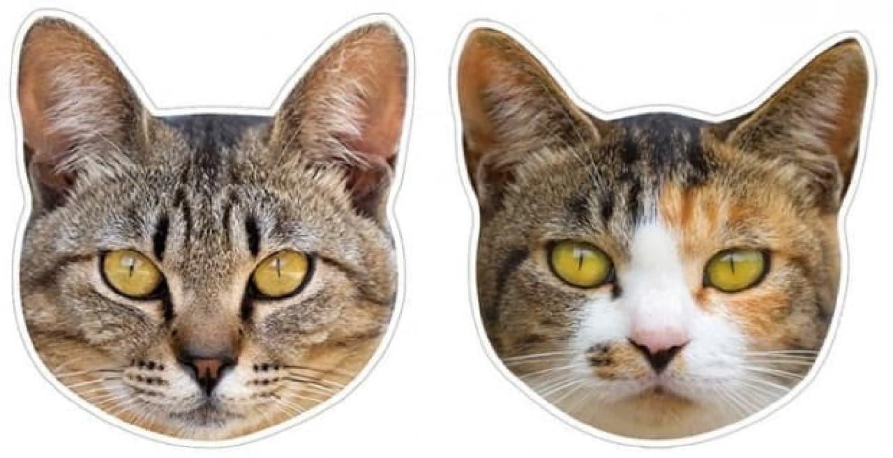 「猫の顔マグネット」シリーズに  「キジトラ」(画像左)「三毛ねこ その2」(画像右)追加