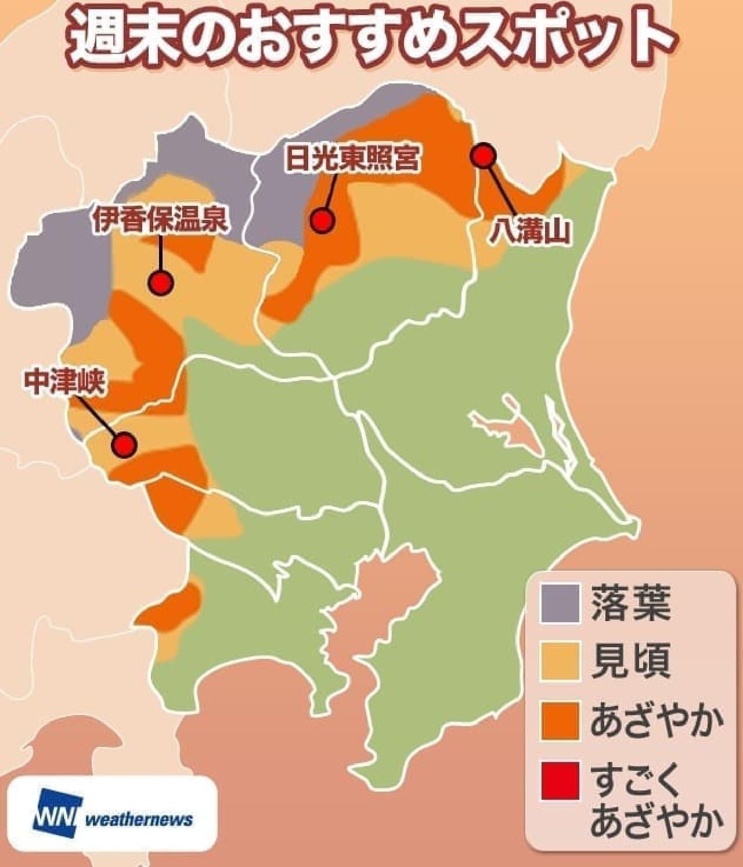 今週末の紅葉狩りおススメスポット(関東)