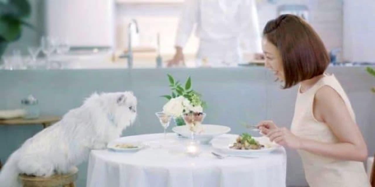 ケータリングサービス「Catering(キャッタリング)」予約受付開始