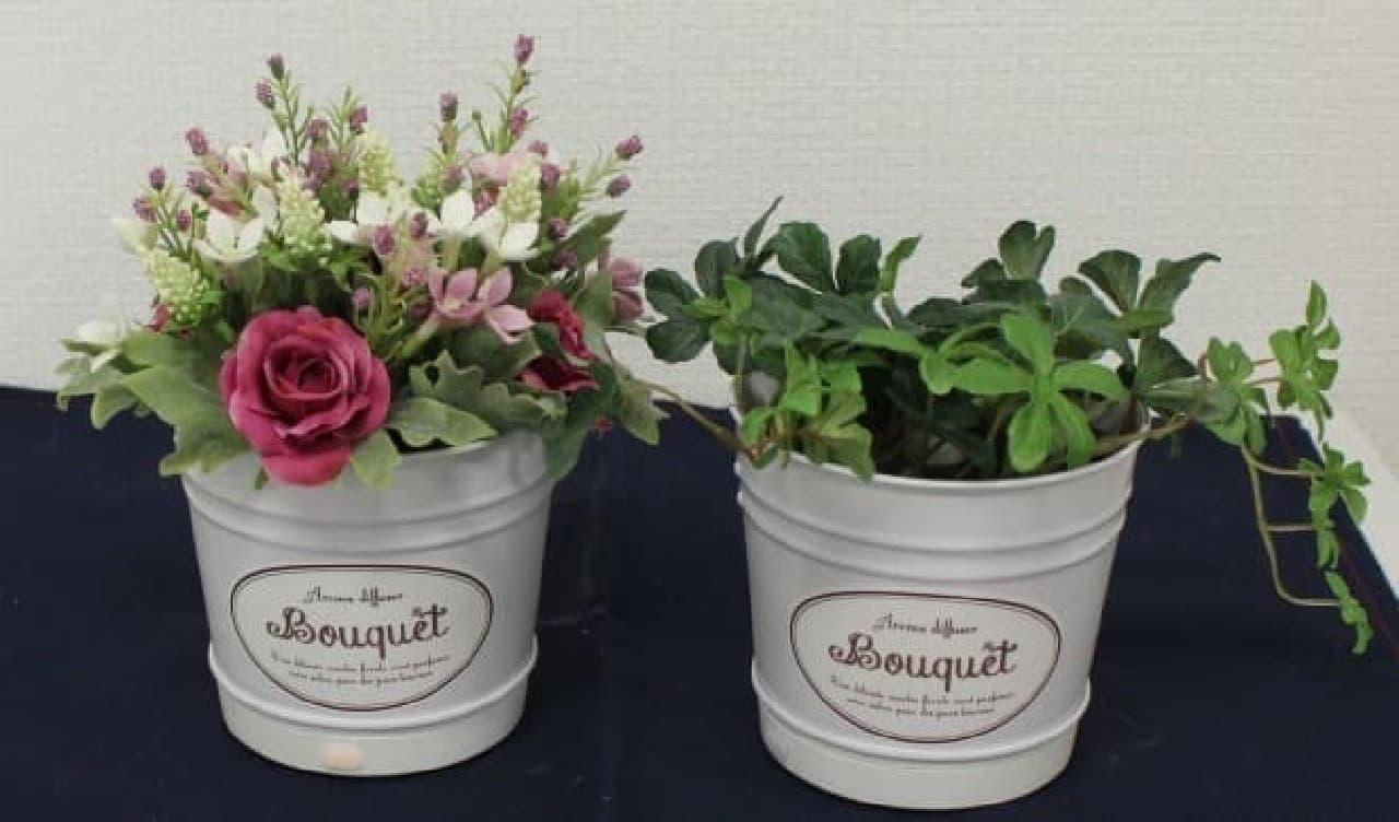 画像は華やかなバラ(左)と緑が目に優しいシサスアイビー(右)