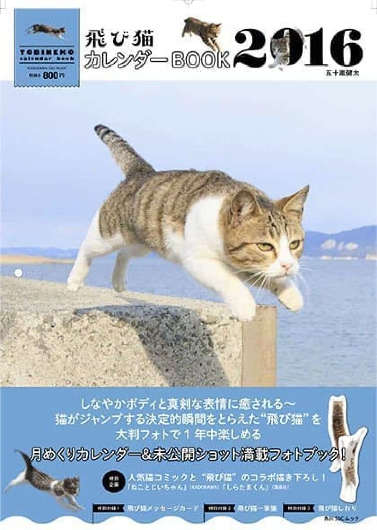 飛び猫 カレンダーBOOK  一年中、ジャンプ!
