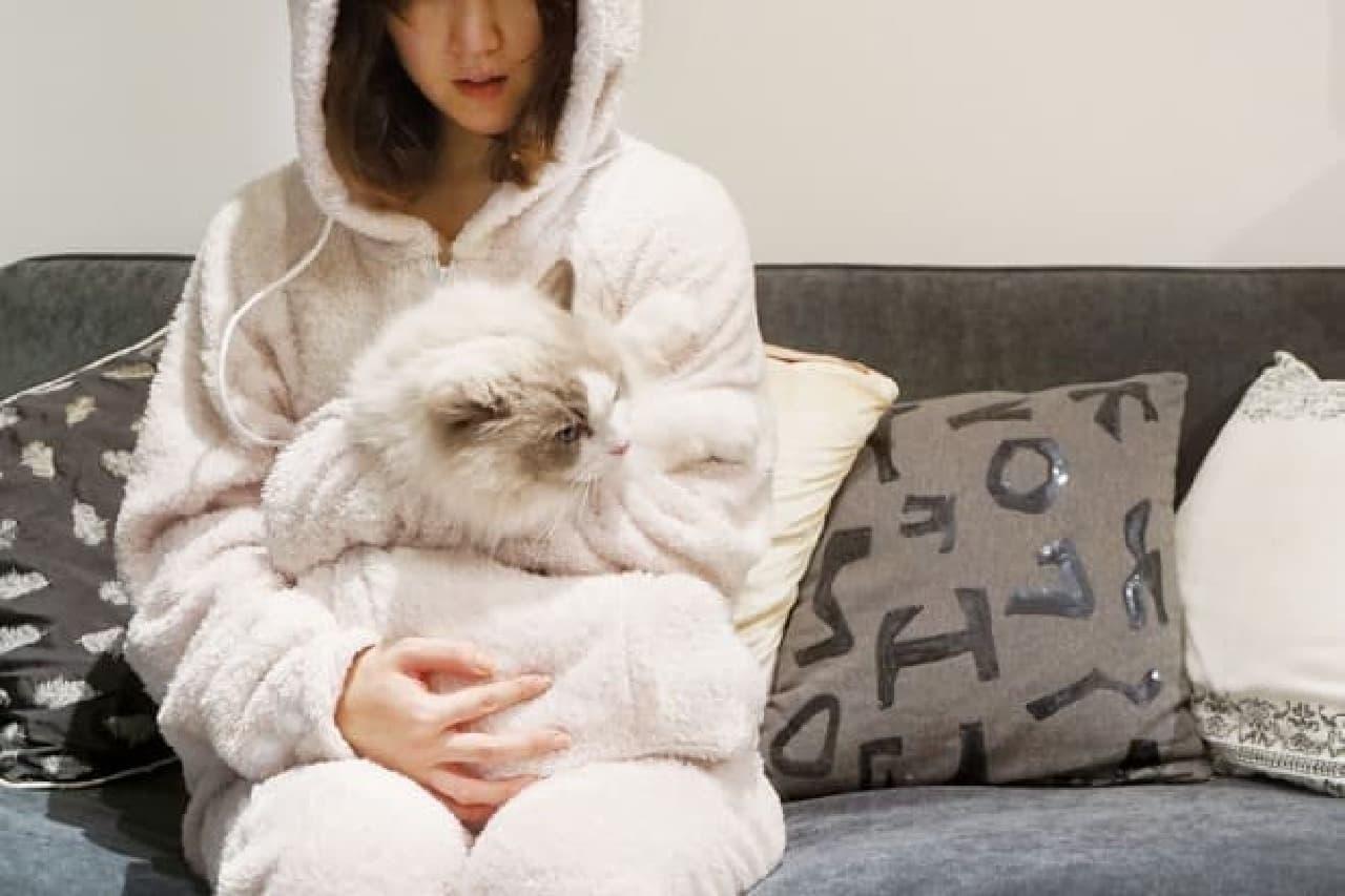 ネコが膝の上に乗ると、飼い主は動けなくなるが