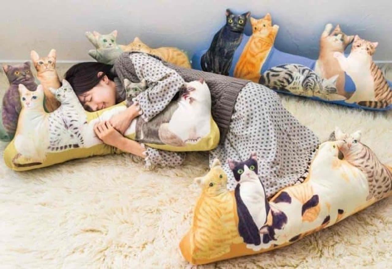 """「世界の猫と""""ネコまみれ""""」  ネコの海に溺れる~"""