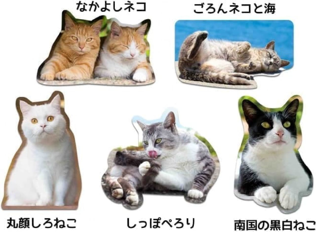 「猫マグネット」シリーズに5種の新作追加