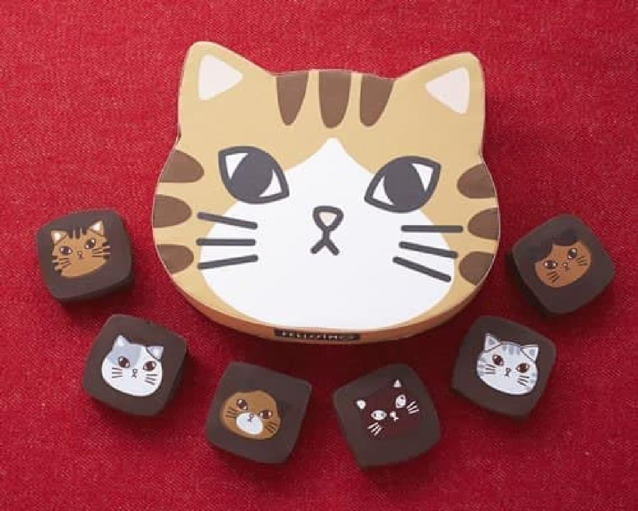東京ソラマチ店限定商品:「ショコラティエ ヤン・プロット 猫ボックスチョコ」