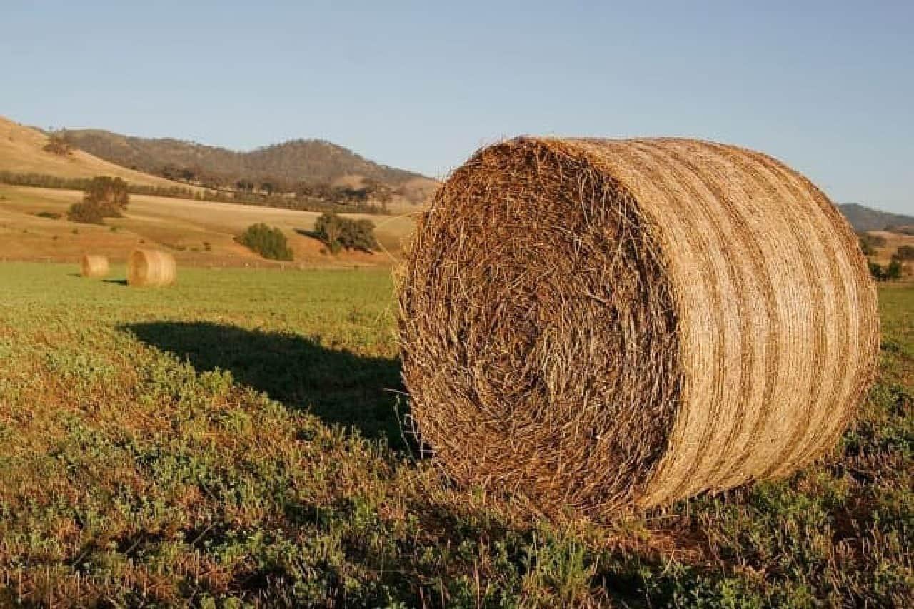 干し草の俵の例  中西部などをクルマで走っているとよく目にする