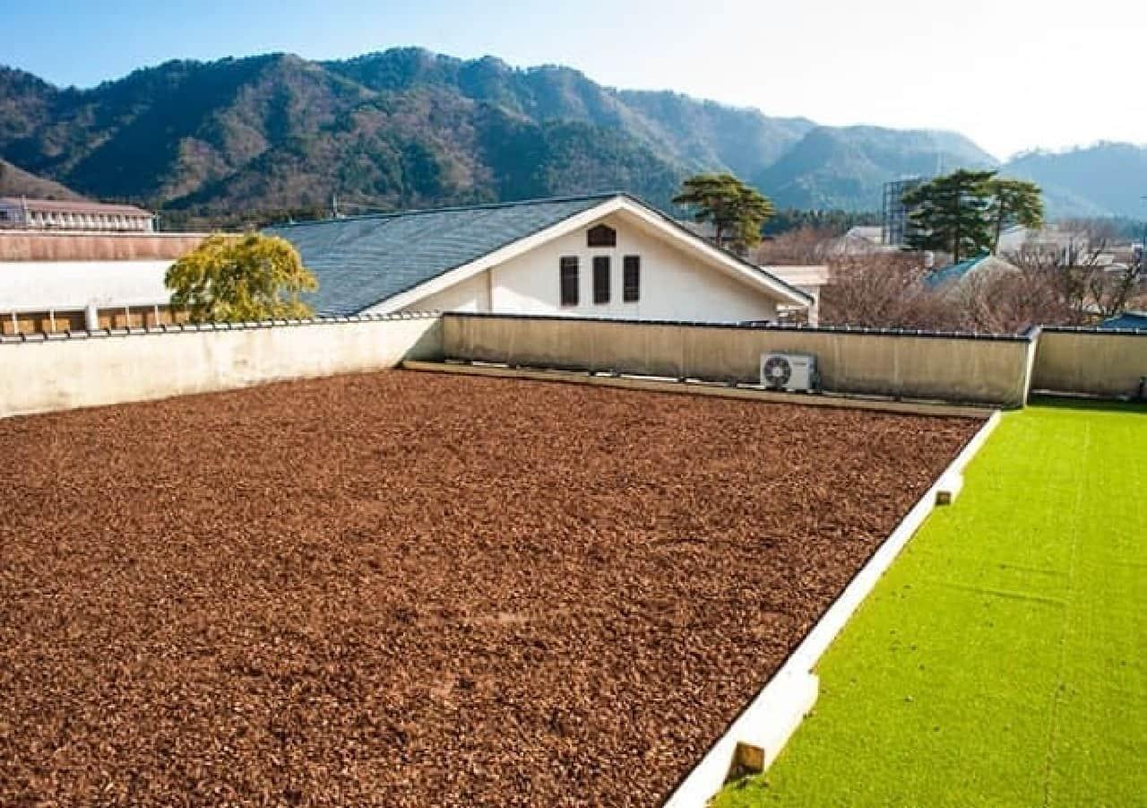 庭園を望める屋上ドッグラン