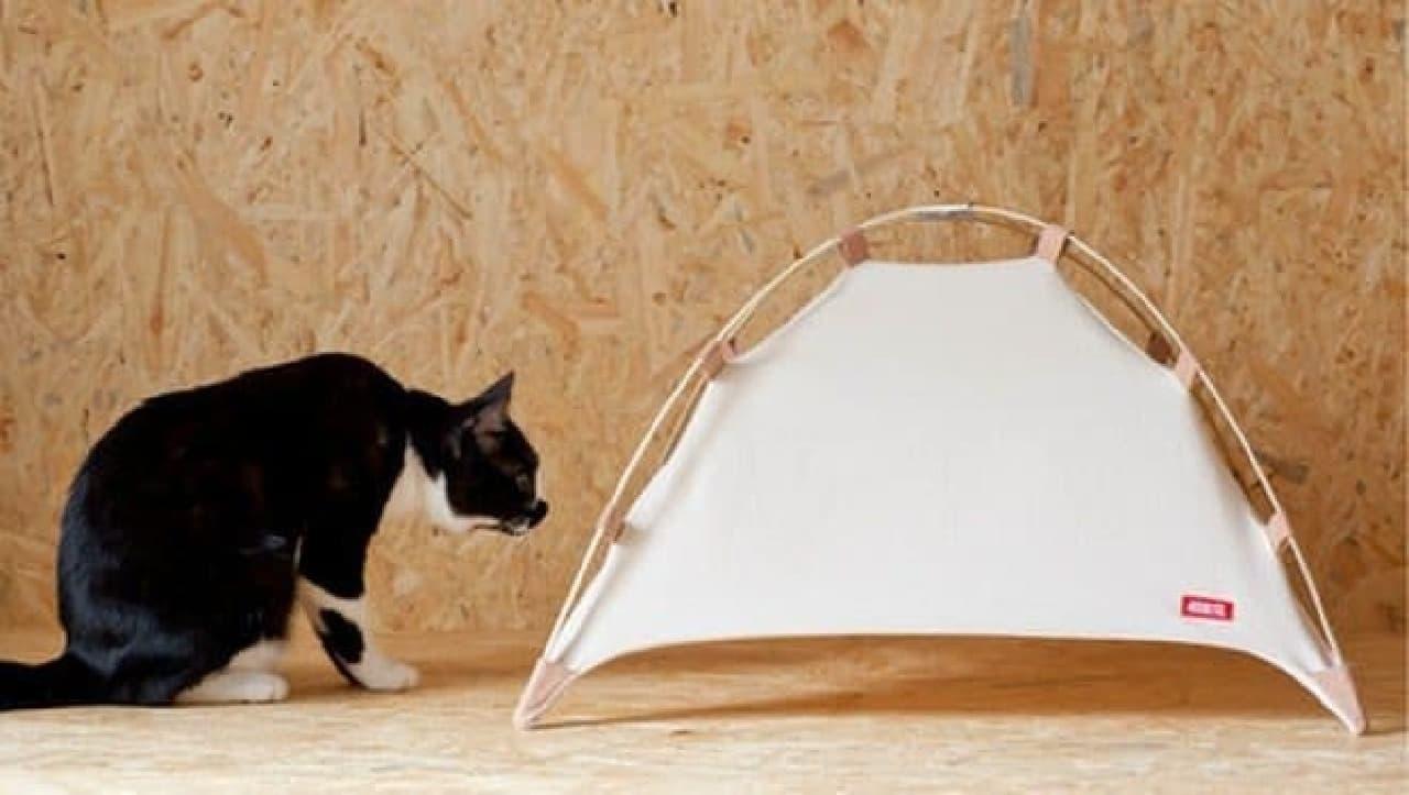 既発売の製品「#catstudyhouse」