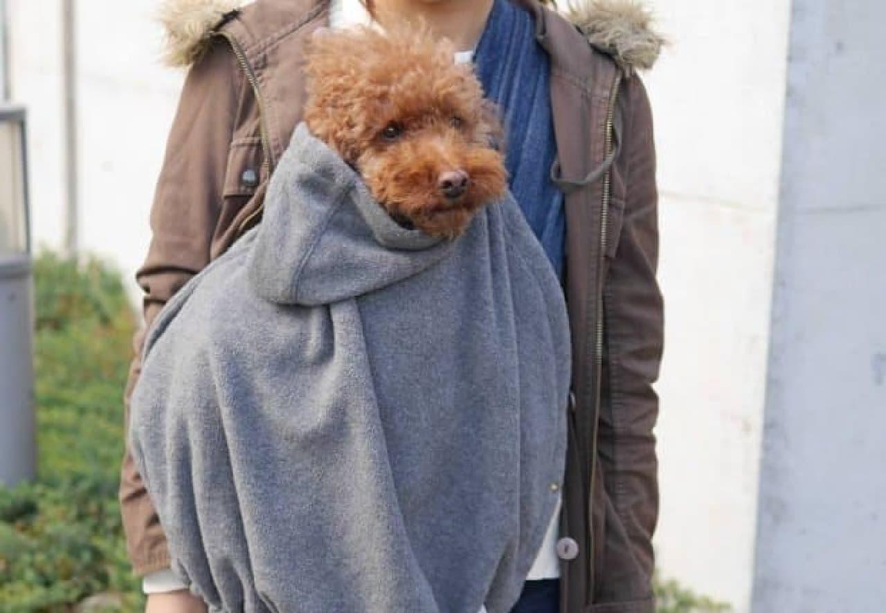 犬を寒さから守りたいという思いから開発された「スリングブランケット」  暖かそう?
