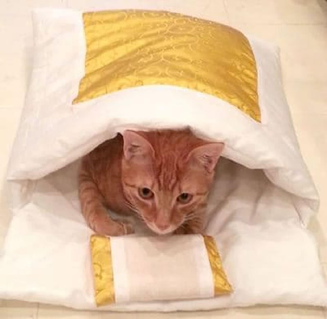 新宿マルイ本館、渋谷ヒカリエShinQsで限定発売!「猫用金布団」