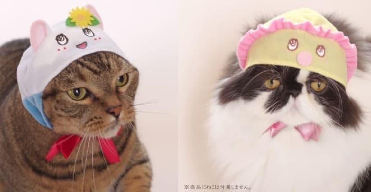 ネコにネコ耳がキュート