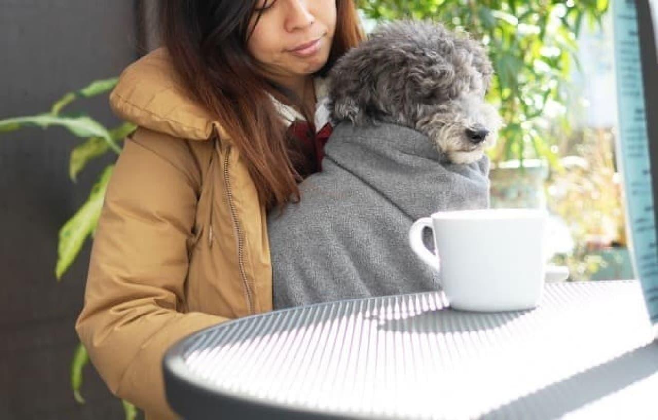ドッグスリングと併用して愛犬を寒さから守る「スリングブランケット」