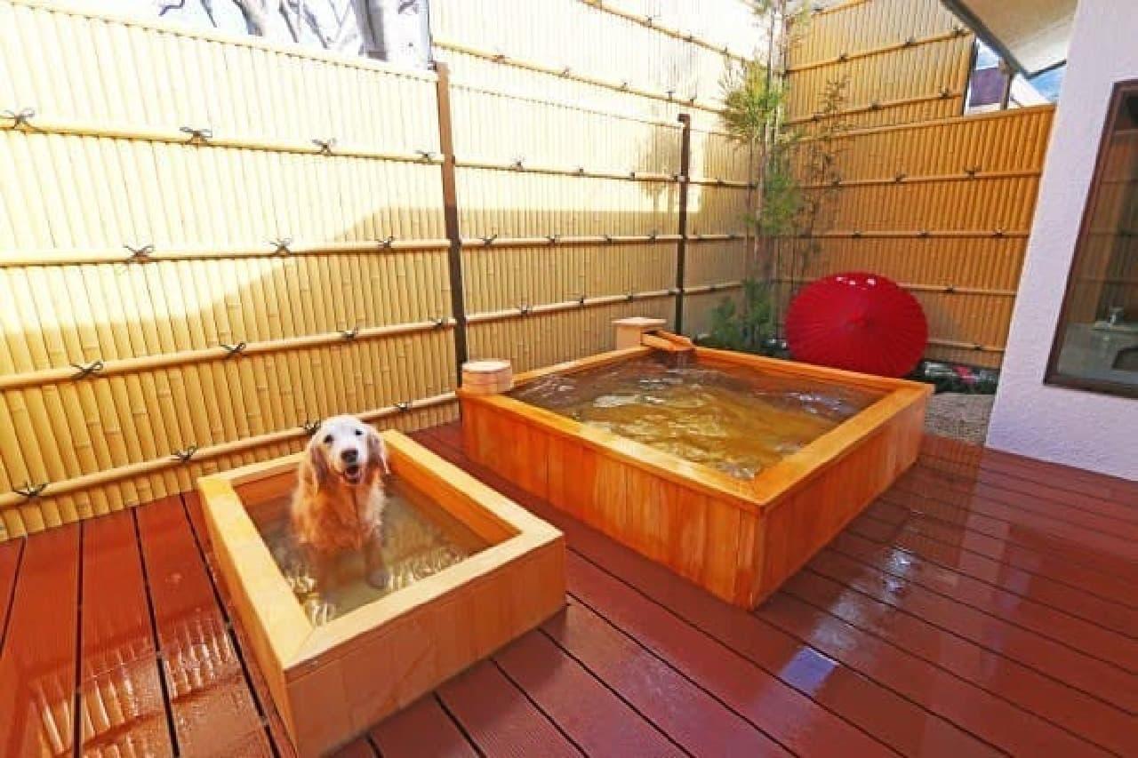 愛犬用の露天風呂も!  (左が愛犬用、右が飼い主用の浴槽)