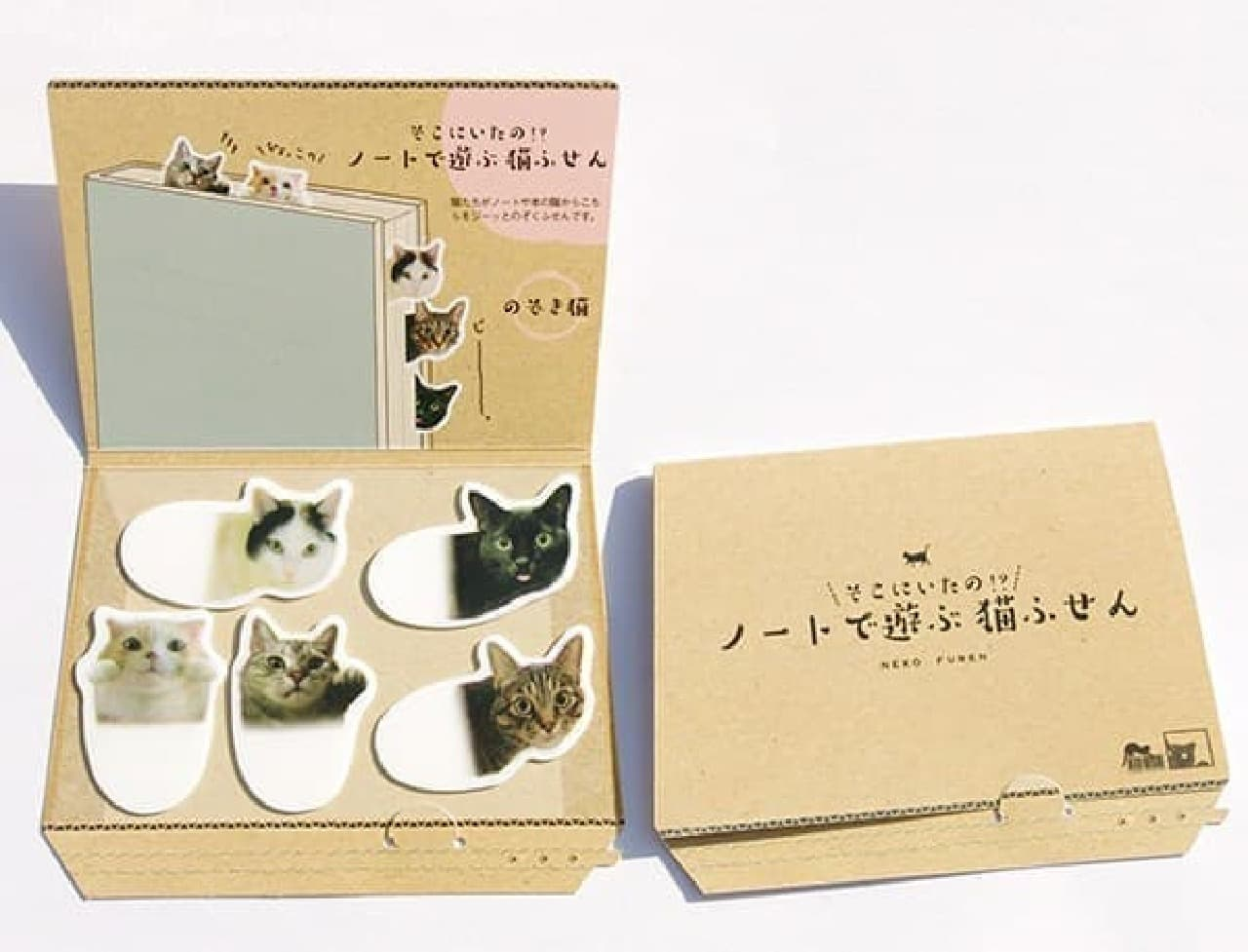 ネコの好きなダンボール箱デザインの台紙で発送!