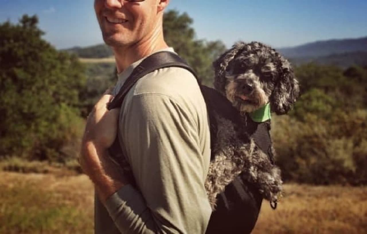 ワンコと一緒にハイキング!