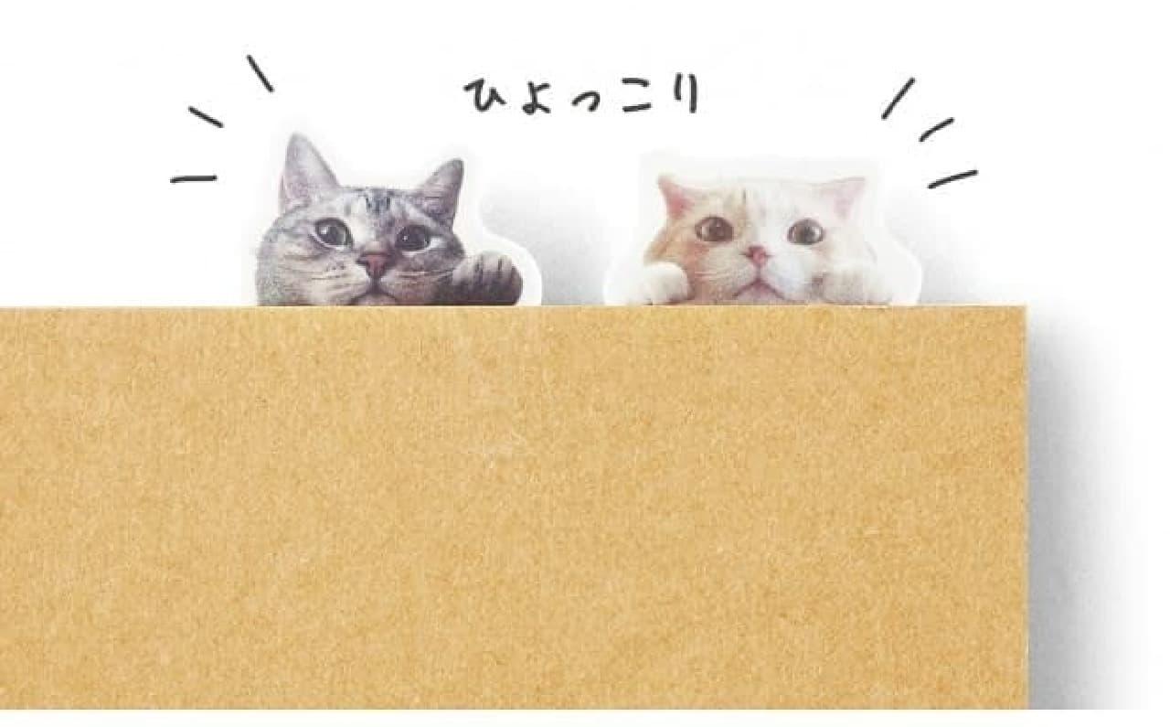 デザインその1:「のぞき猫」  ひょっこり
