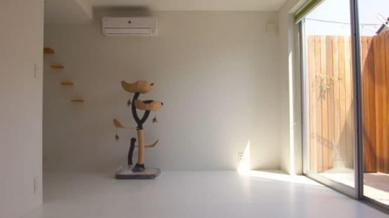 ネコの飼い主さんに特化した「Seilan Apartment」、3月19日オープン  (注意:画像は「Seilan Apartment」を監修した「Gatos Apartment」の一室)
