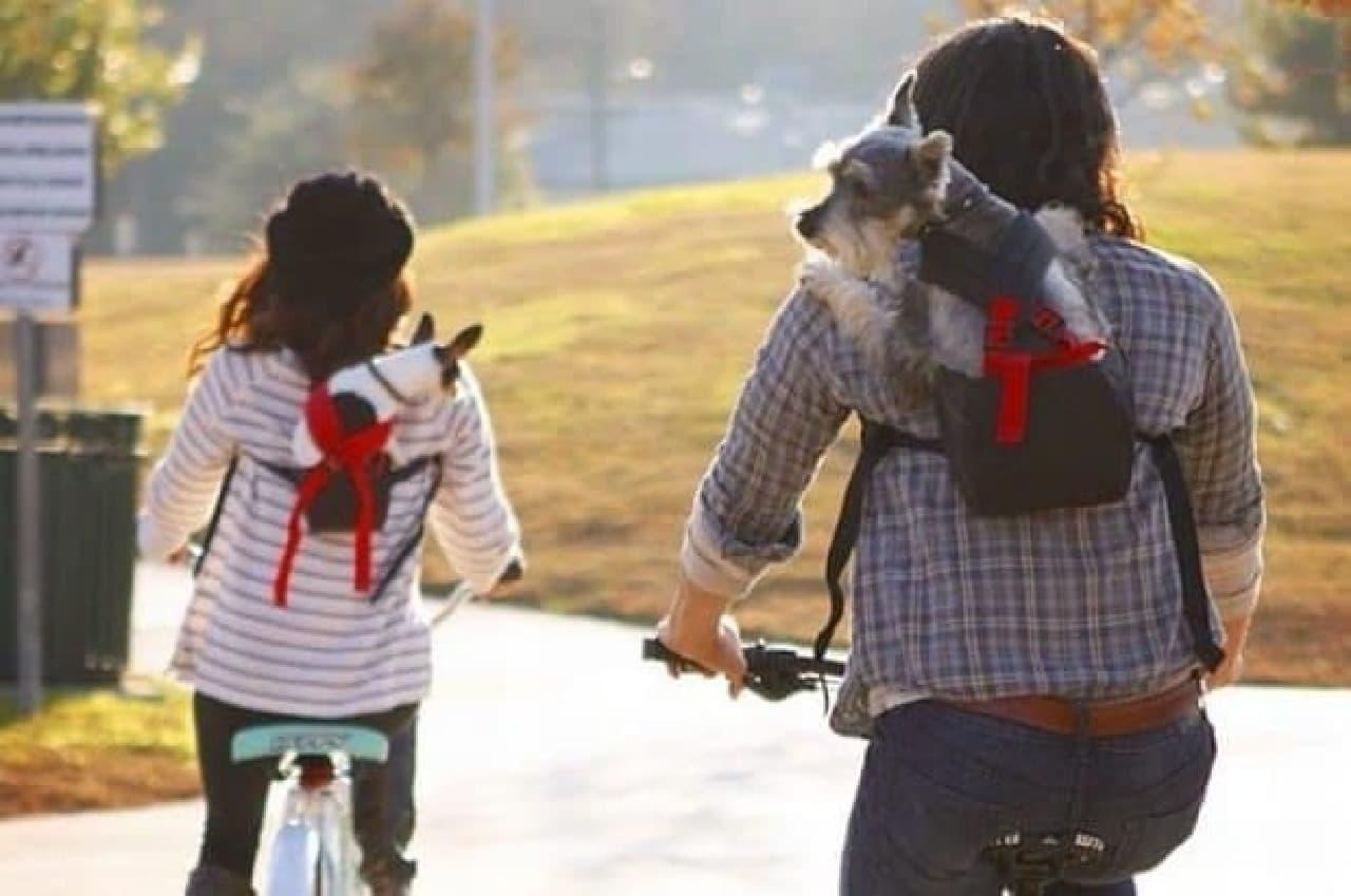 サイクリングはもちろん