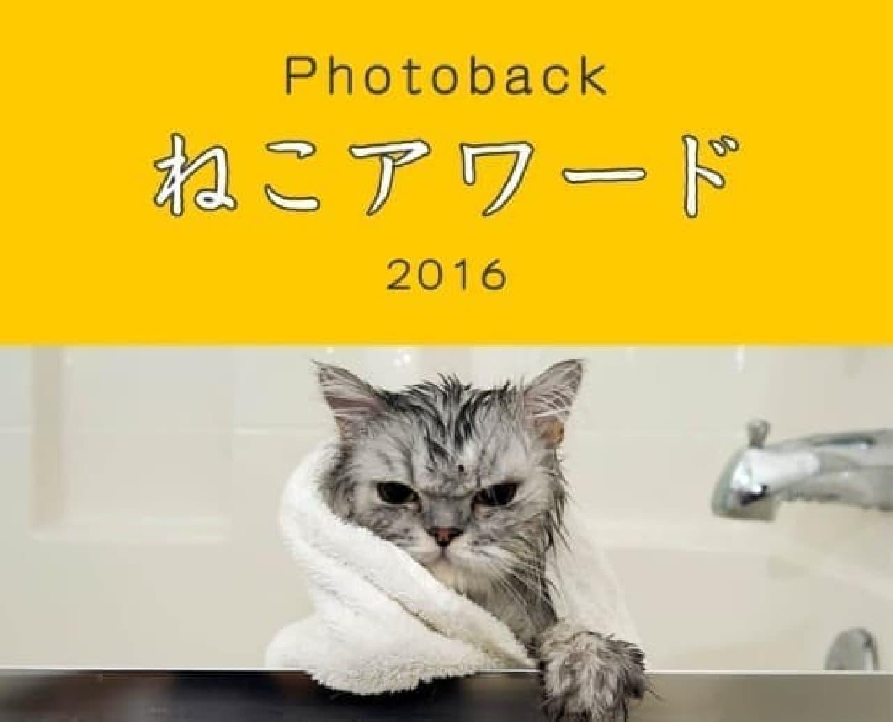 自慢のネコ写真で応募するニャ!