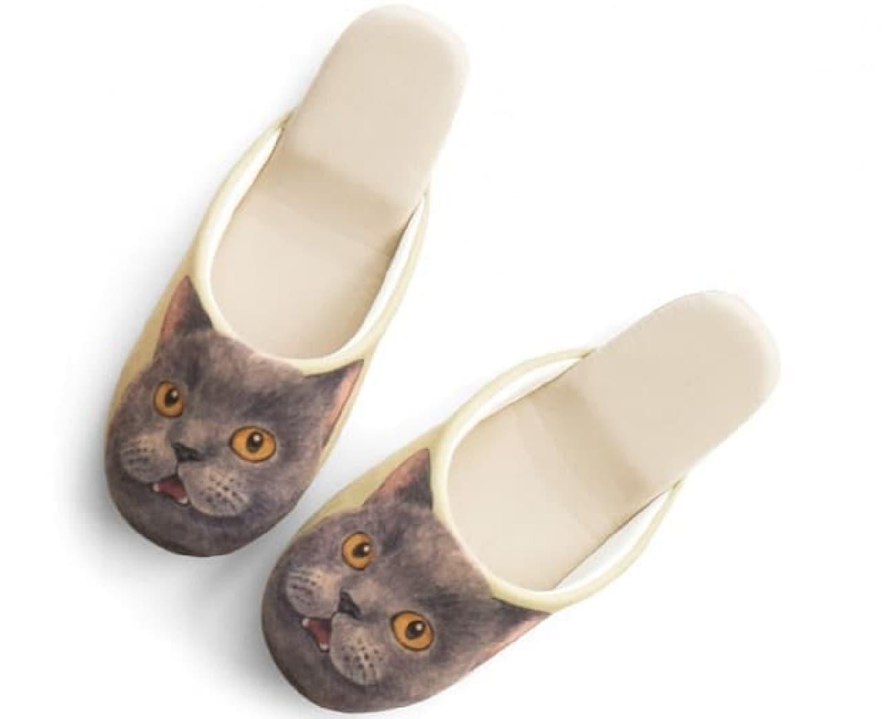 """フローリングの上を""""猫足""""でそっと静かに歩ける?  (画像は「ブリティッシュショートヘア」さん)"""
