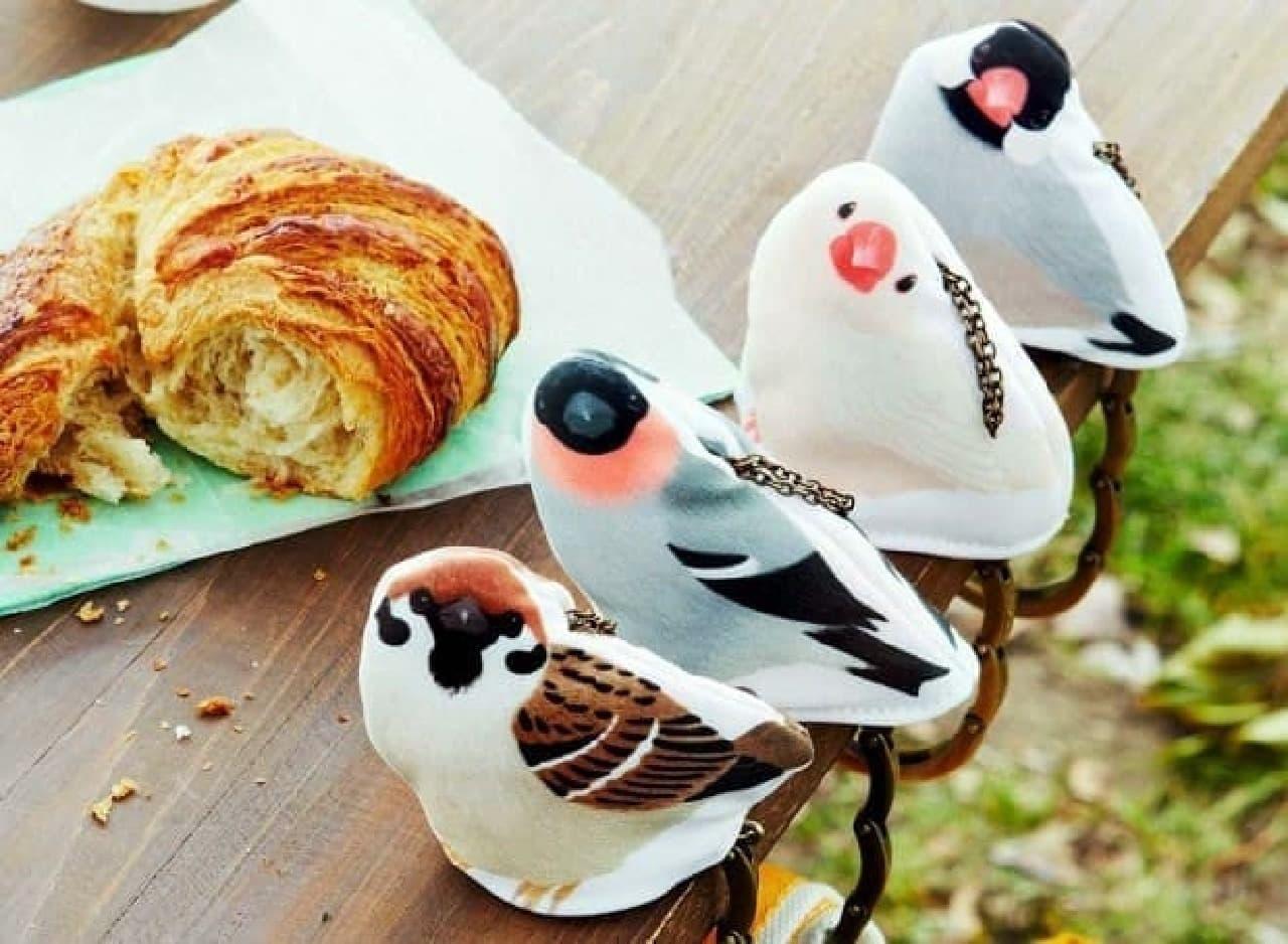 左から、スズメ、鷽(ウソ)、桜文鳥、白文鳥  みんな、こっち見てる!!