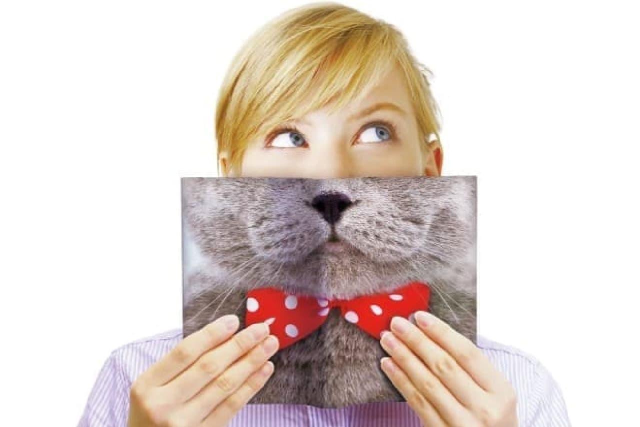 あくびを隠したらネコに変身!?  ブックカバー 410円