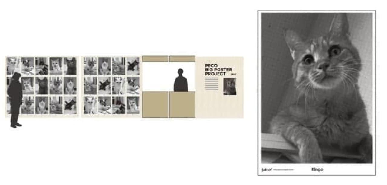 ペット写真からポスターを作成するサービスも(1枚1,500円)