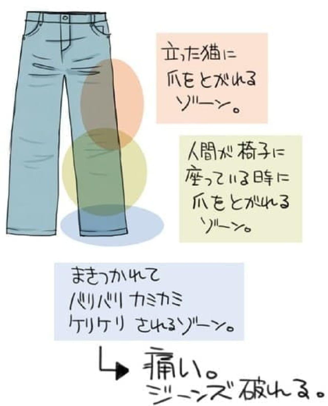 漫画家 山野りんりんさんの提案書(その1)  ネコを飼う上での、通常のジーンズの問題点