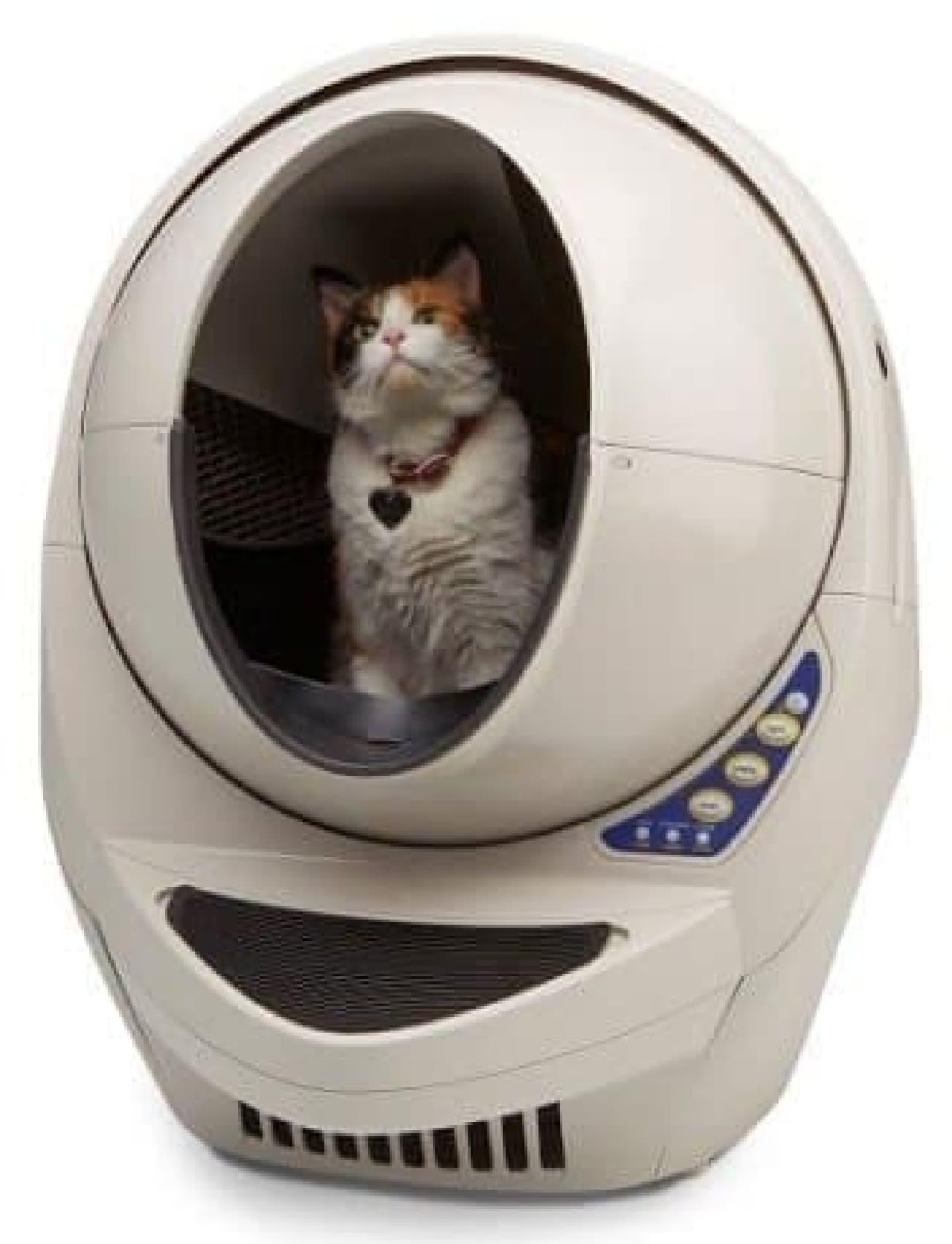 6か月以上なら、大体大丈夫ニャ  ちなみに、生まれたばかりの子ネコは100グラムくらいだニャ