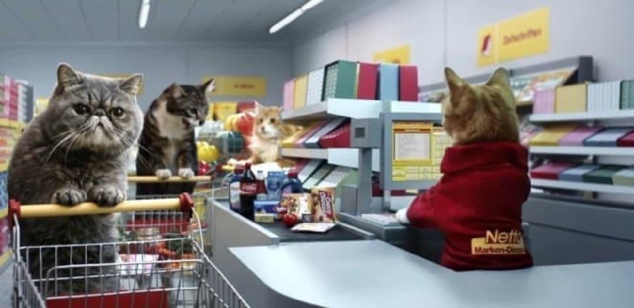 ドイツのスーパーが製作した動画、ネコのお買い物