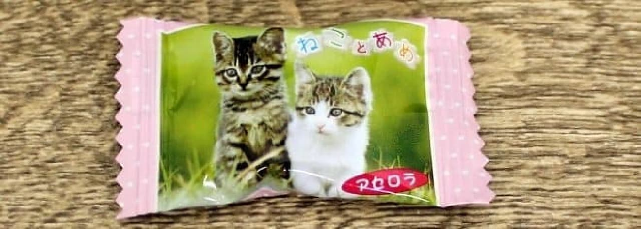 岩合光昭さんのネコ写真がパッケージになったパインアメの「ねことあめ