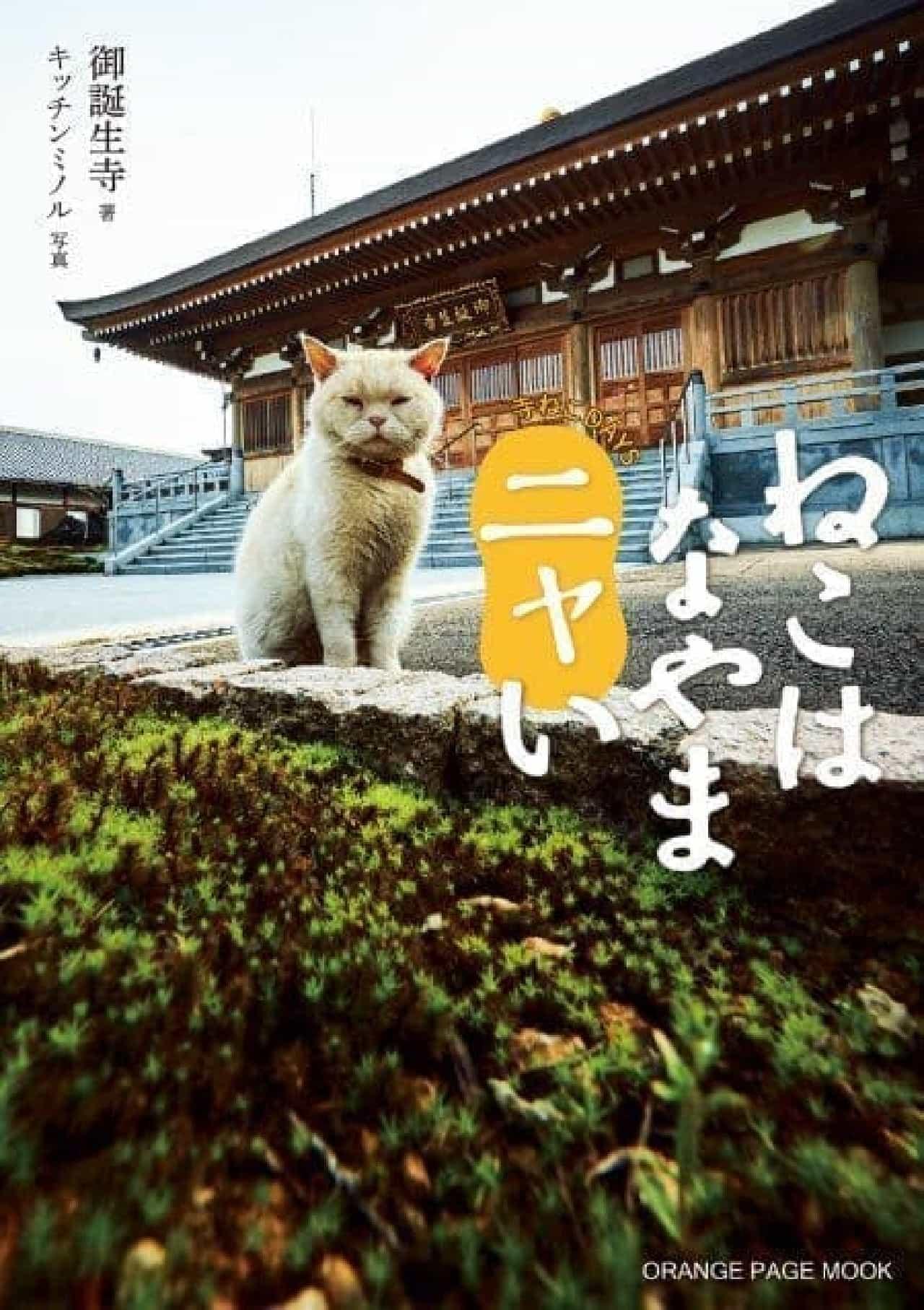 『寺ねこDAYS ねこはなやまニャい』表紙