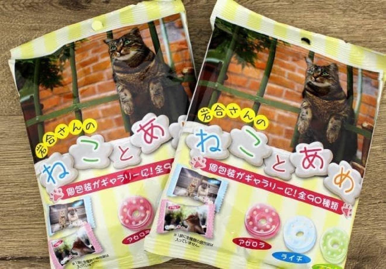 岩合光昭さんのネコ写真がパッケージになったパインアメの「ねことあめ」