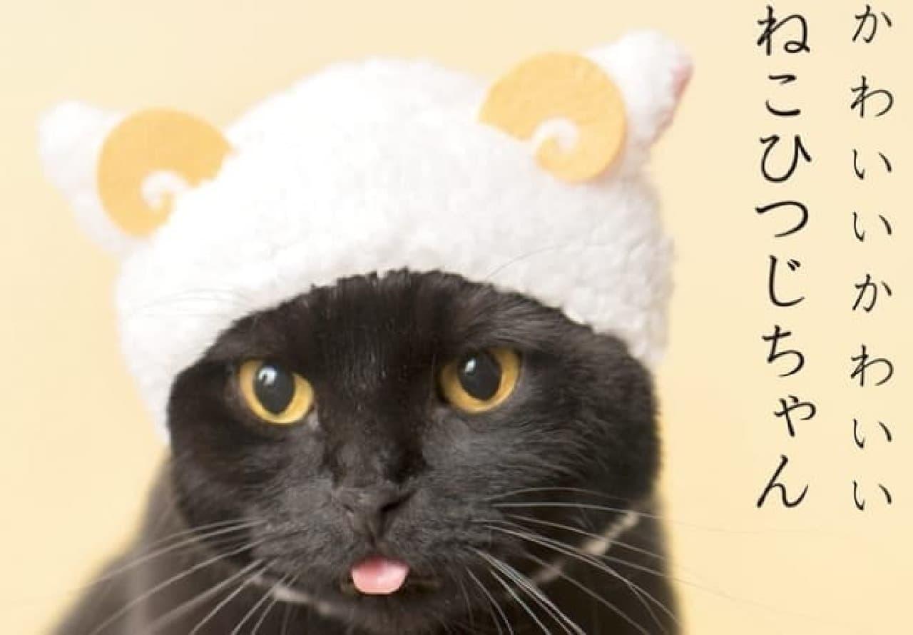 奇譚クラブネコのかぶりもの「かわいいかわいいねこひつじちゃん」