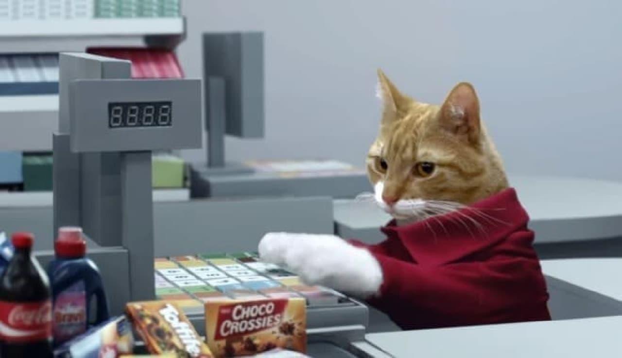 ドイツのスーパーが製作した動画では店員もネコ