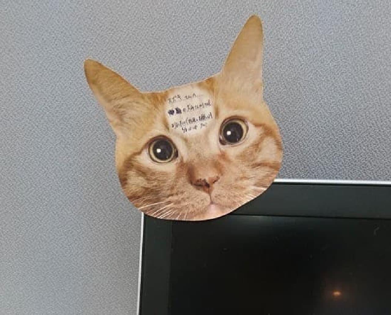 「猫のひたい 付箋メモ」で、伝言を伝えるテクニック2 細かい文字で
