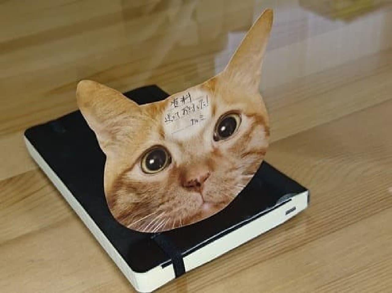狭い場所であることを示すことわざ「猫のひたい」を商品化した「猫のひたい 付箋メモ」